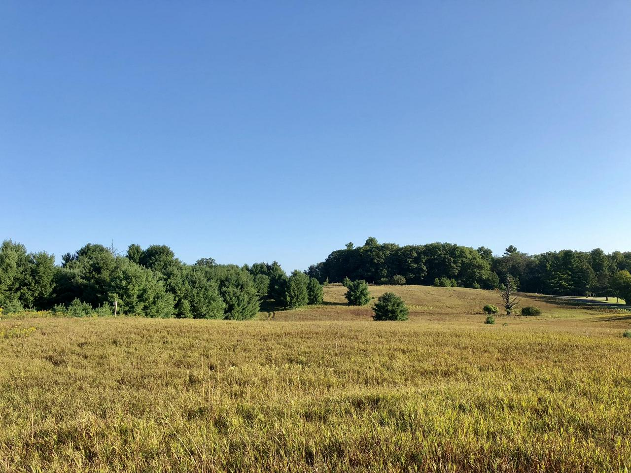View Vacant Land For Sale at Lt 17 Noquebay Rd, Crivitz, WI