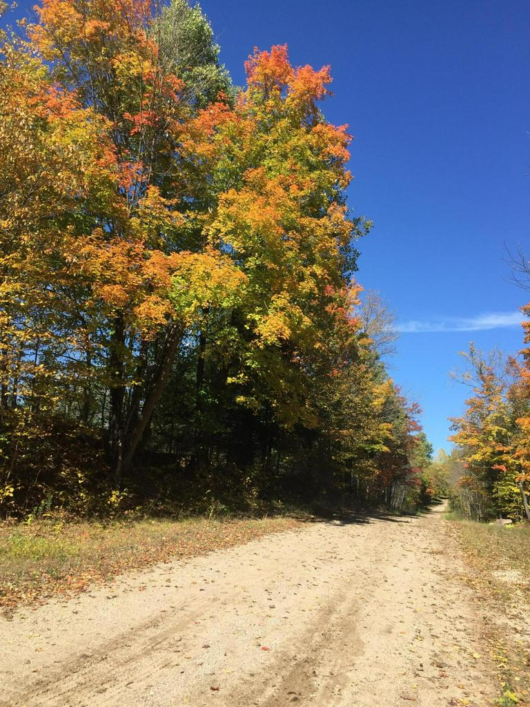 View Vacant Land For Sale at Lt0 Rautio Ln, Amberg, WI