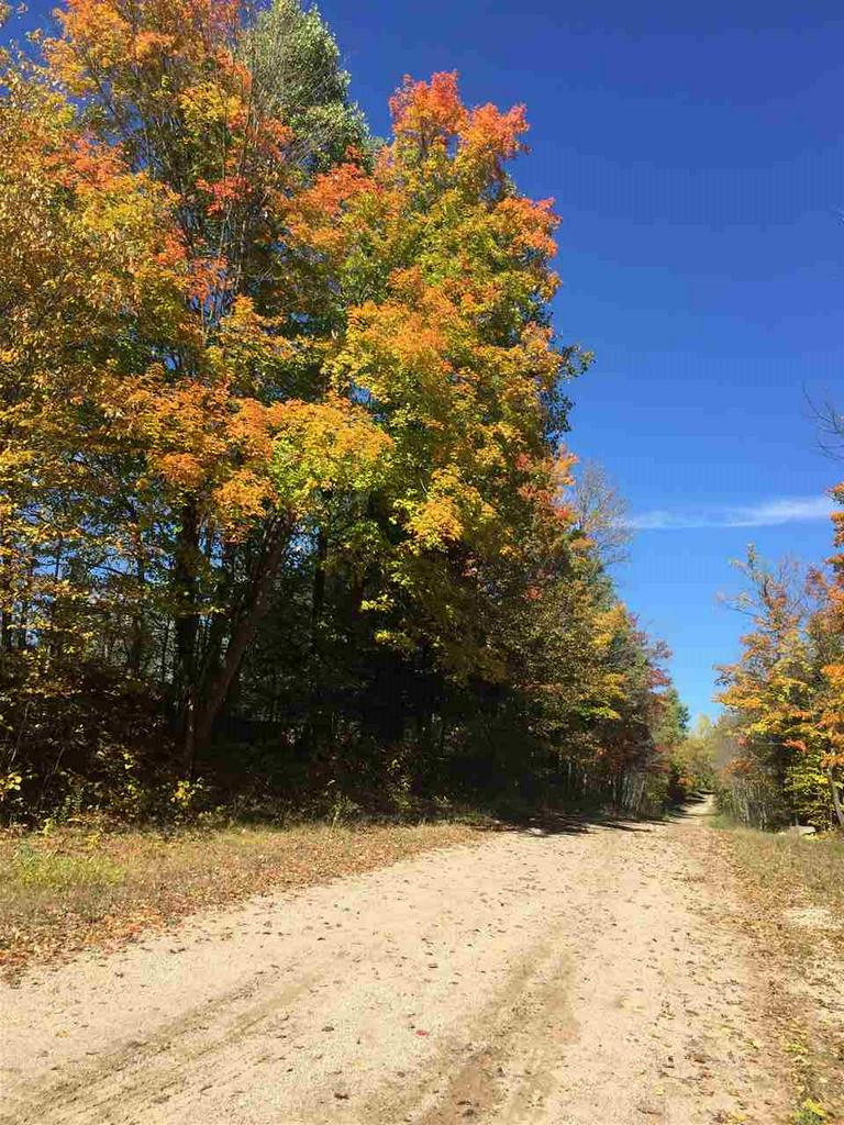 View Vacant Land For Sale at RAUTIO LANE, Amberg, WI