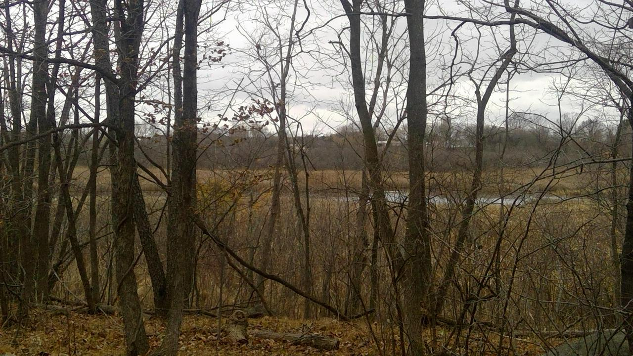 34.9 Acres County Road E at FF