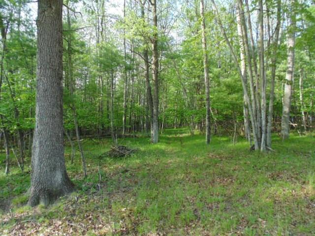 View Vacant Land For Sale at WOODHAVEN DRIVE, Wallace, MI