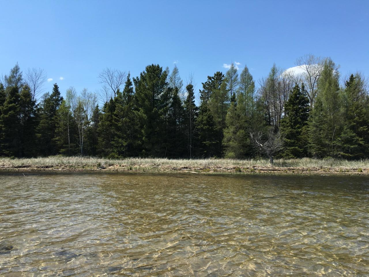 View Vacant Land For Sale at Lot 3 Hwy M-35, Abbotsford, MI
