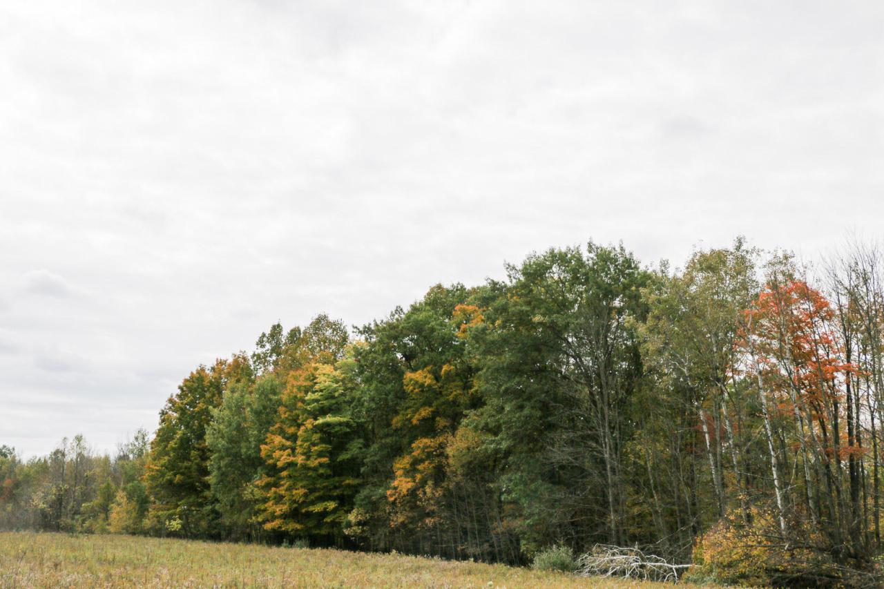 View Vacant Land For Sale at Lt White Doe Ln, Crivitz, WI