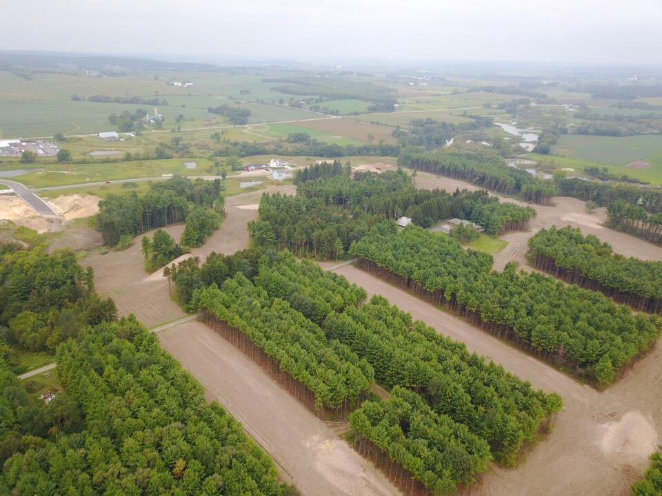 View Vacant Land For Sale at 30Ac Colt Dr, Belleville, WI