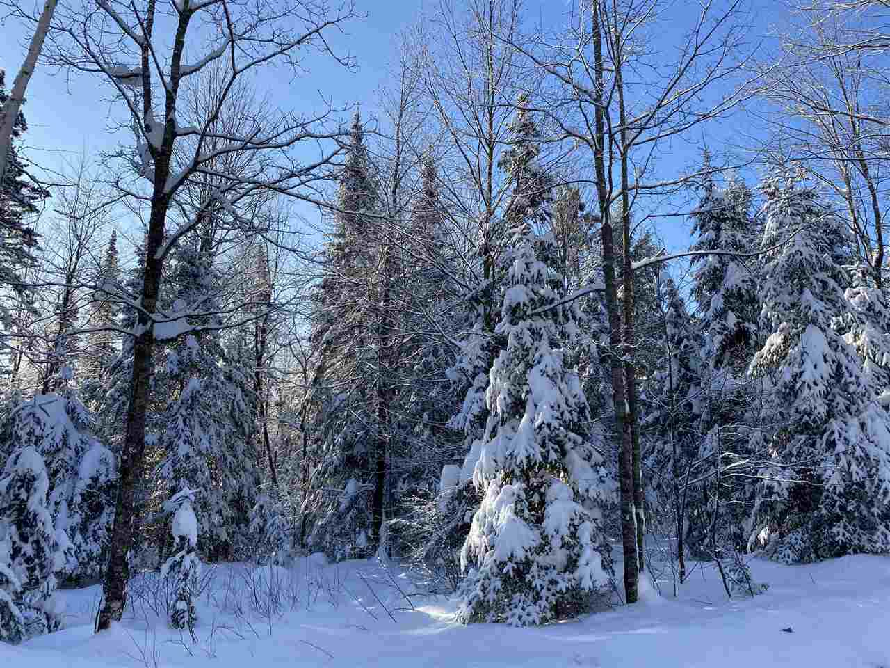 View Vacant Land For Sale at 11542 NEWALD ROAD, Fence, WI