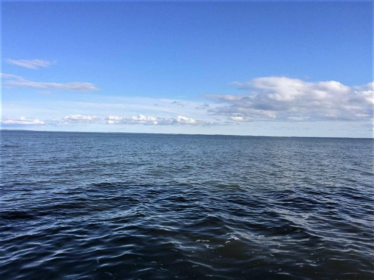 View Vacant Land For Sale at 3426 HWY S, Little Suamico, WI