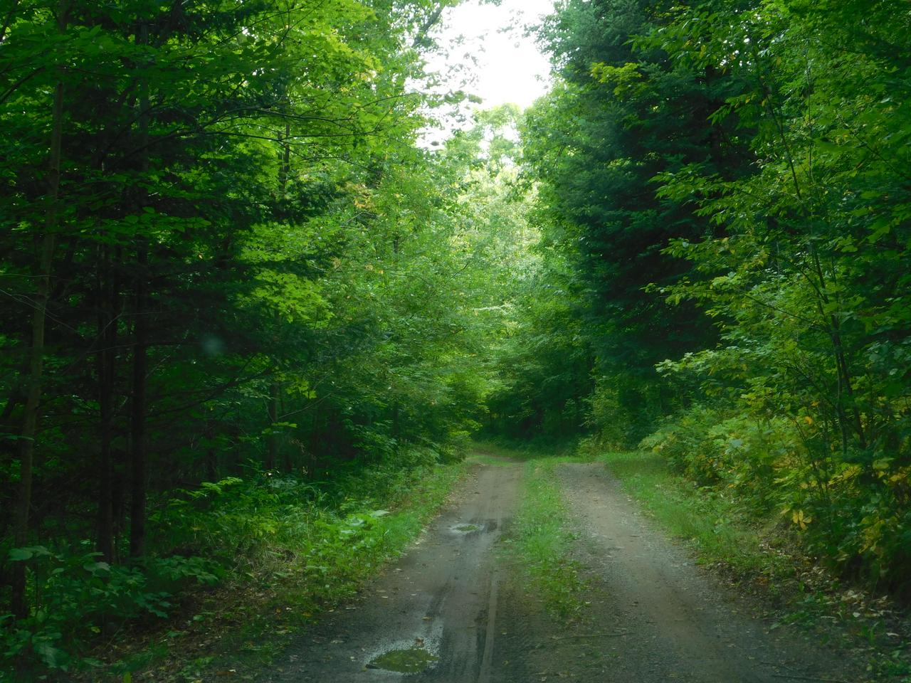 View Vacant Land For Sale at 2297 Hwy 8, Armstrong Creek, WI