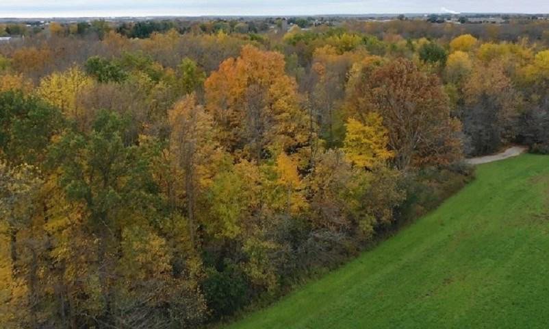 View Vacant Land For Sale at FARRELL ROAD, Kaukauna, WI