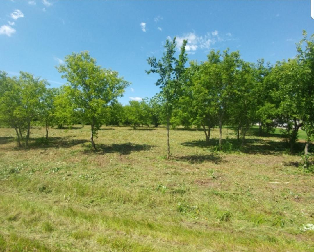 View Vacant Land For Sale at Lot 1 Camber Lane, Pulaski, WI