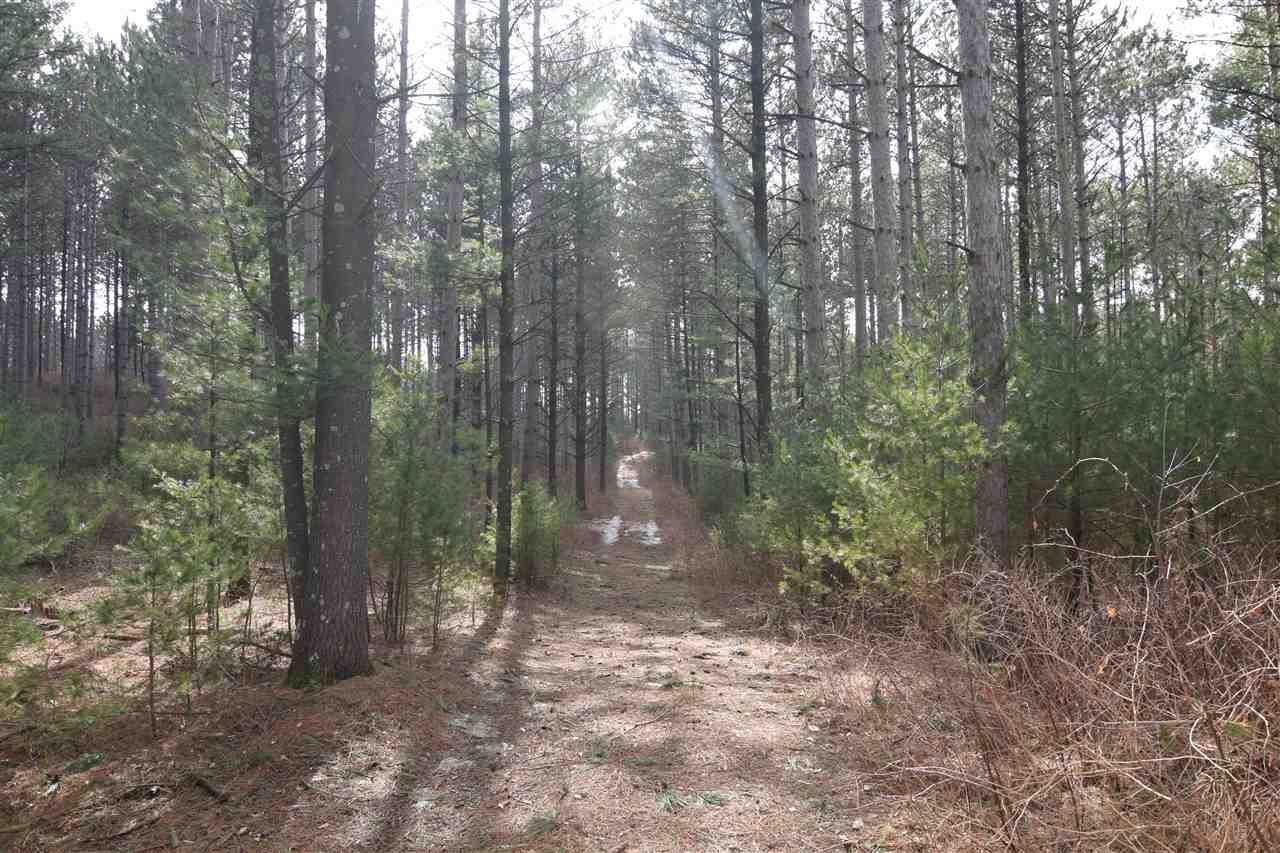 View Vacant Land For Sale at W8395 HWY I, Clintonville, WI
