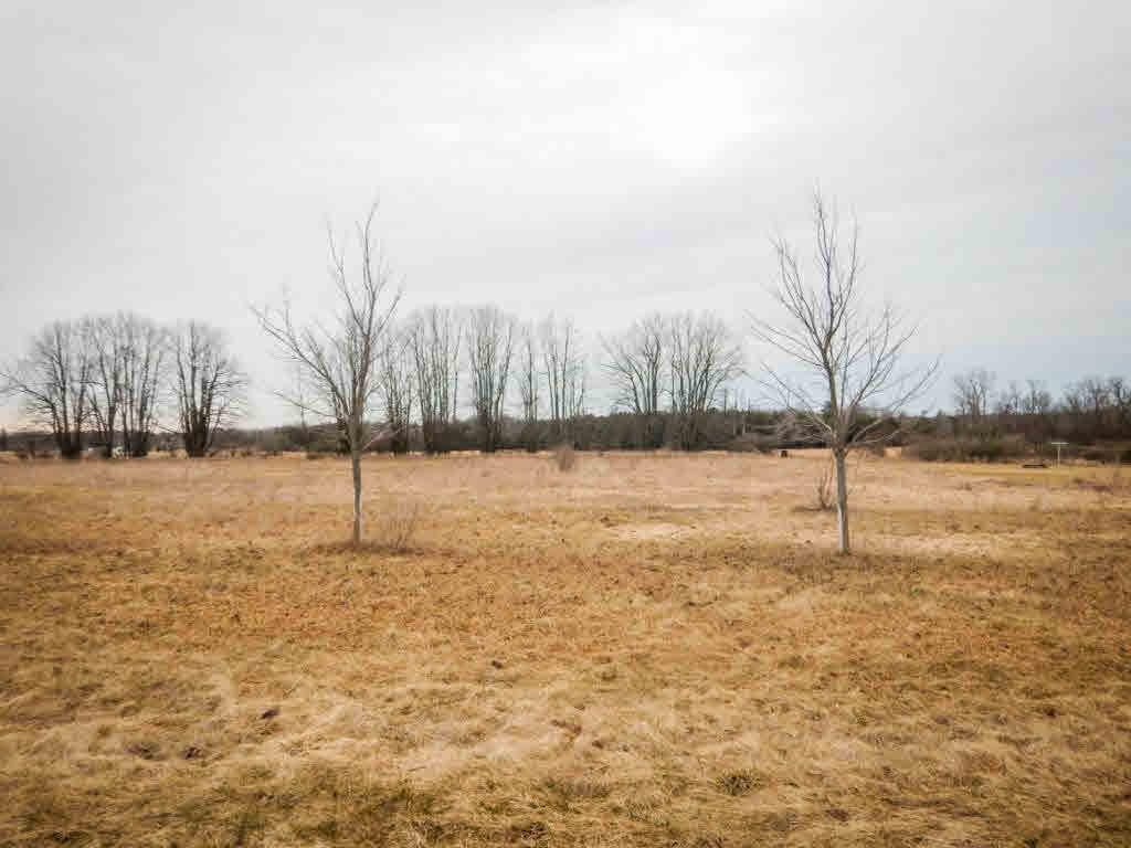 View Vacant Land For Sale at FRANCIS COURT, Lena, WI