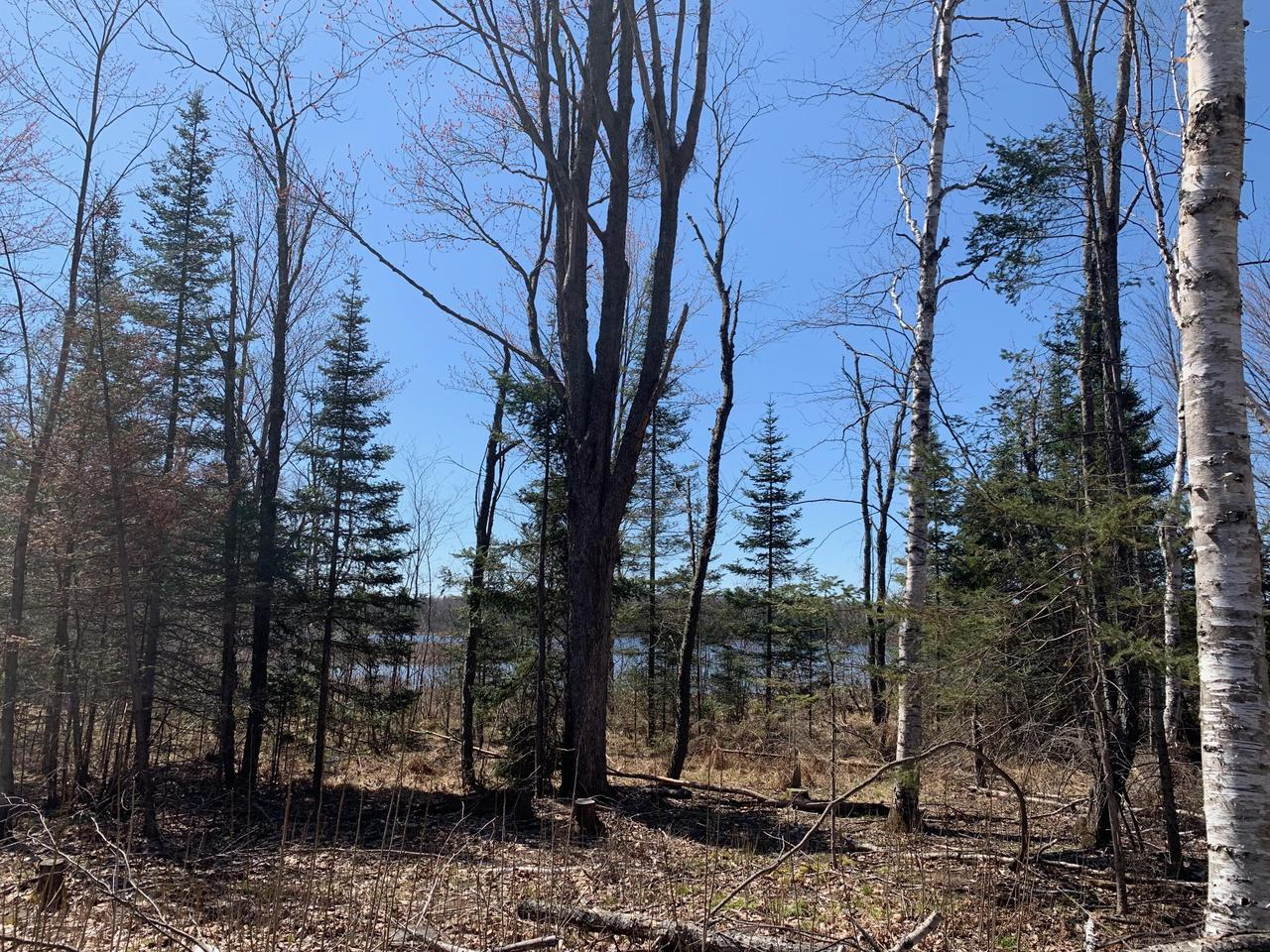 View Vacant Land For Sale at N20975 Stillwater Ln, Niagara, WI