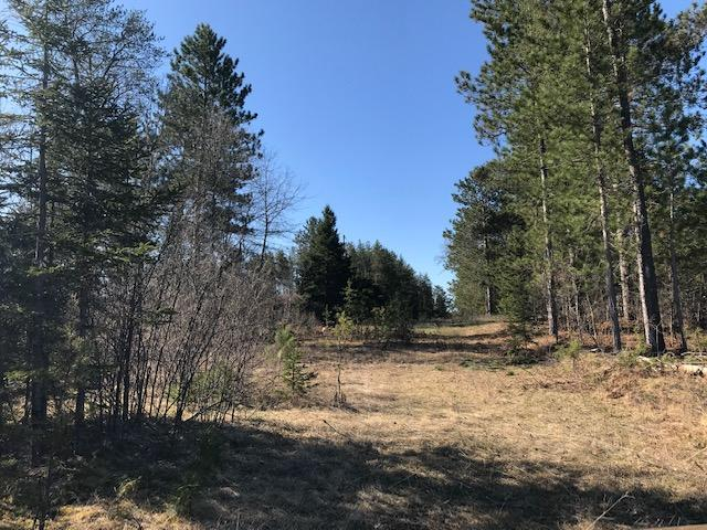 View Vacant Land For Sale at 31.2 Acres Weckerle Rd, Pembine, WI