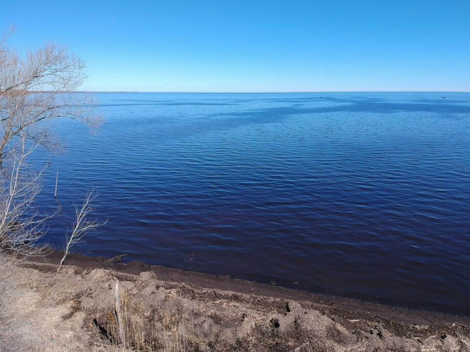 View Vacant Land For Sale at 7698 HWY Y, Oconto, WI