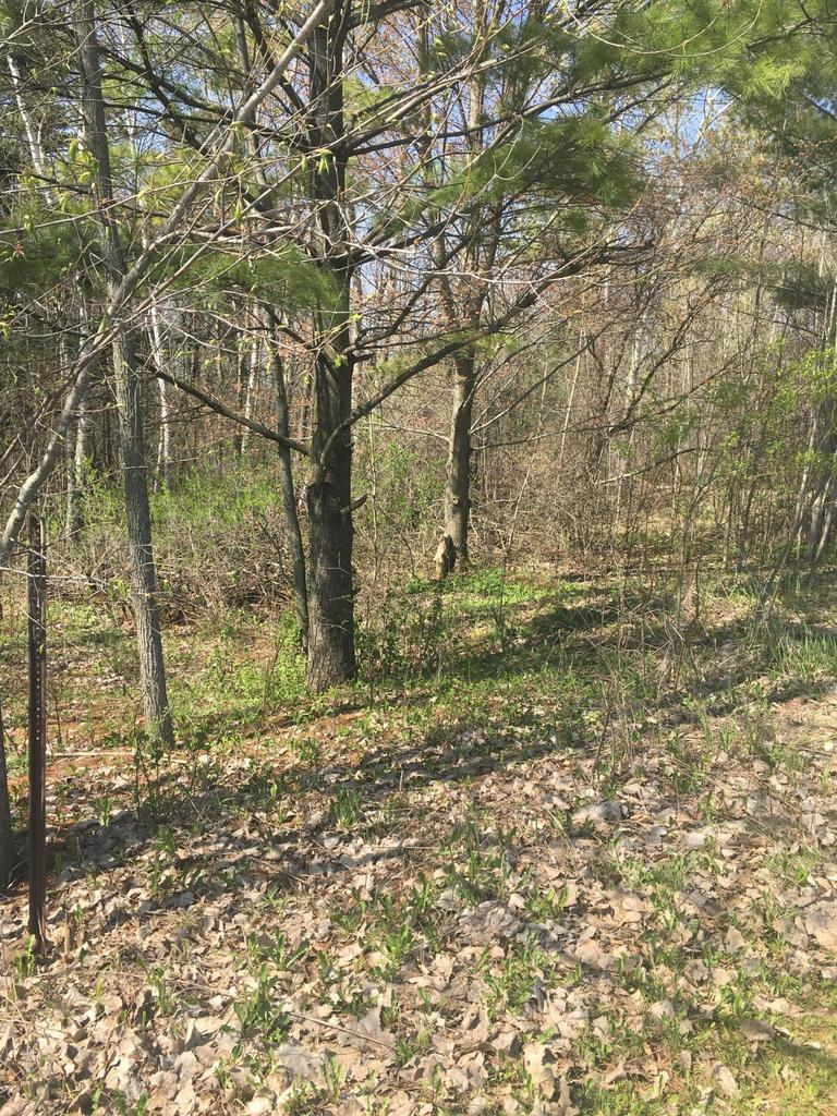 View Vacant Land For Sale at Lot Diamond Ridge, Denmark, WI