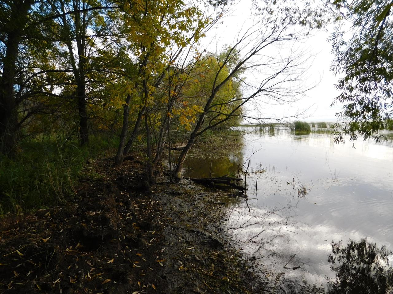 View Vacant Land For Sale at Lt1 Hwy Y, Oconto, WI
