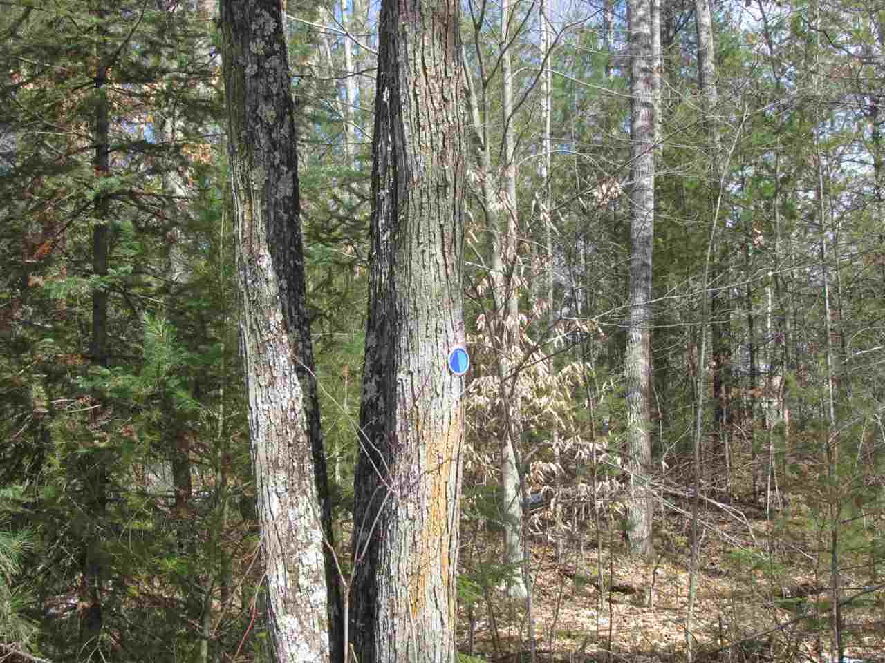 View Vacant Land For Sale at 4982 WEST SLOPE LANE, Oconto, WI