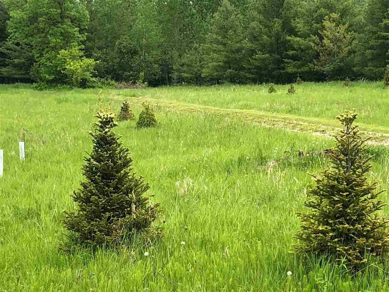 View Vacant Land For Sale at MAYFLOWER ROAD, Shiocton, WI