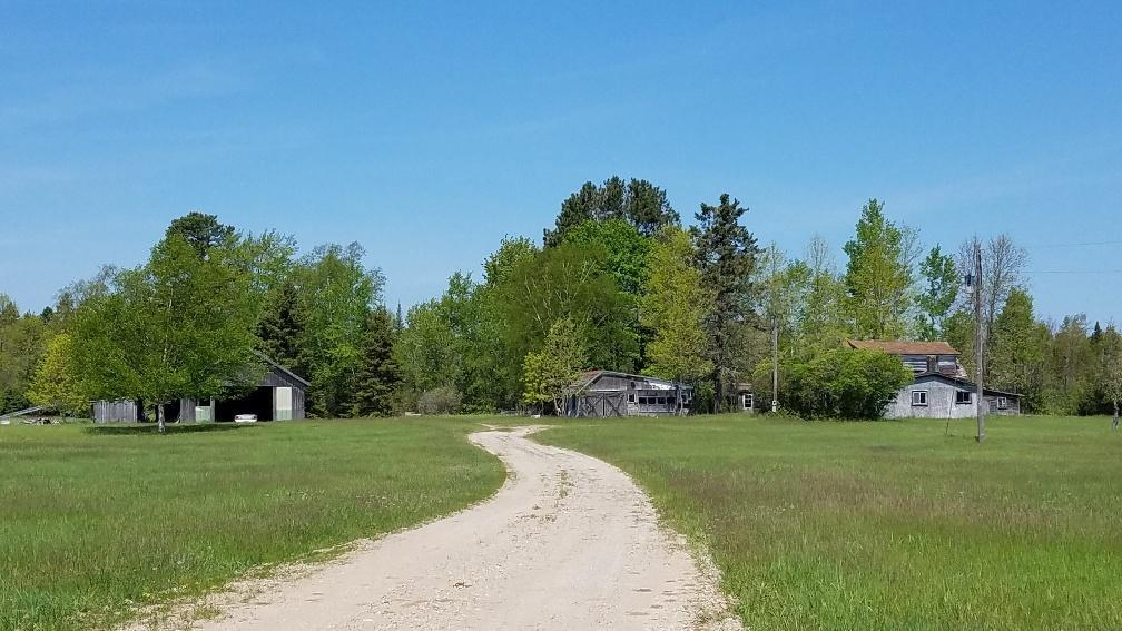 View Vacant Land For Sale at N9848 Hwy M 35  Bolen Ln, CEDARVILLE, MI