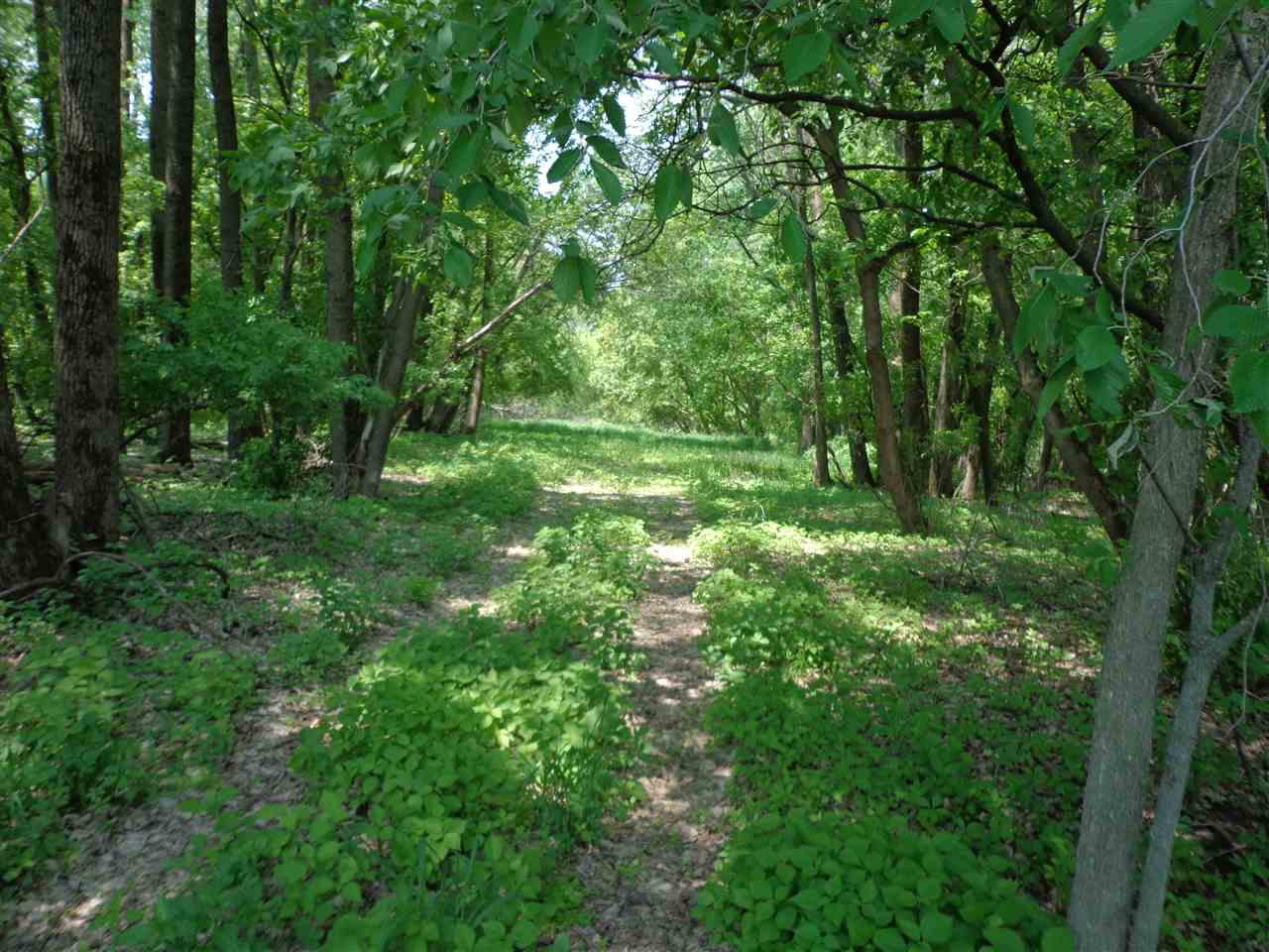 View Vacant Land For Sale at PULS ROAD, Shiocton, WI