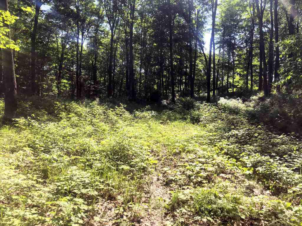 View Vacant Land For Sale at NICOLET HILLS ROAD, Long Lake, WI