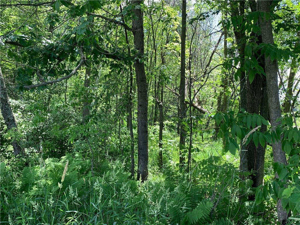 View Vacant Land For Sale at 0 150th Avenue, Cadott, WI