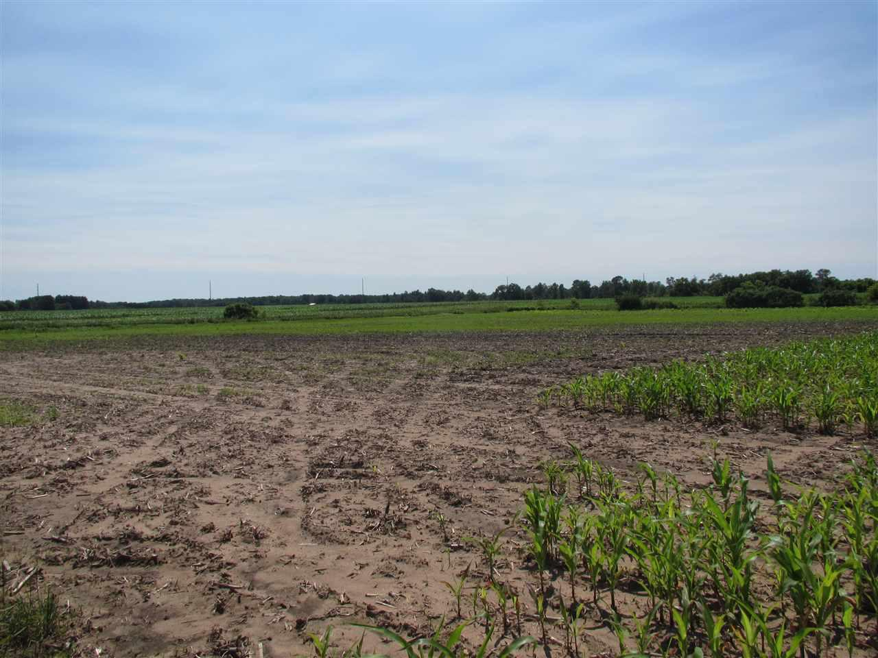 View Vacant Land For Sale at HALLMAN ROAD, Berlin, WI