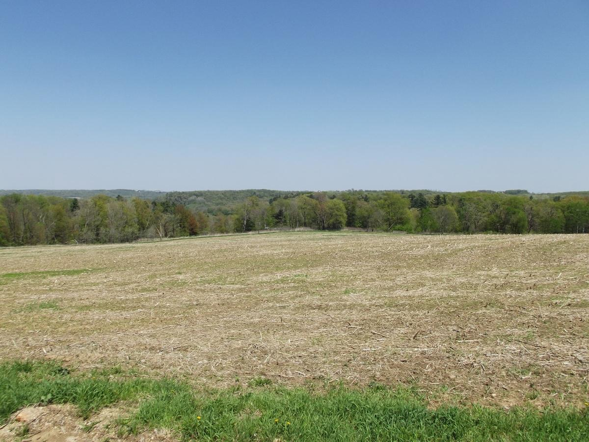 View Vacant Land For Sale at 15+/- AC Mimosa/Midway, Wilton, WI