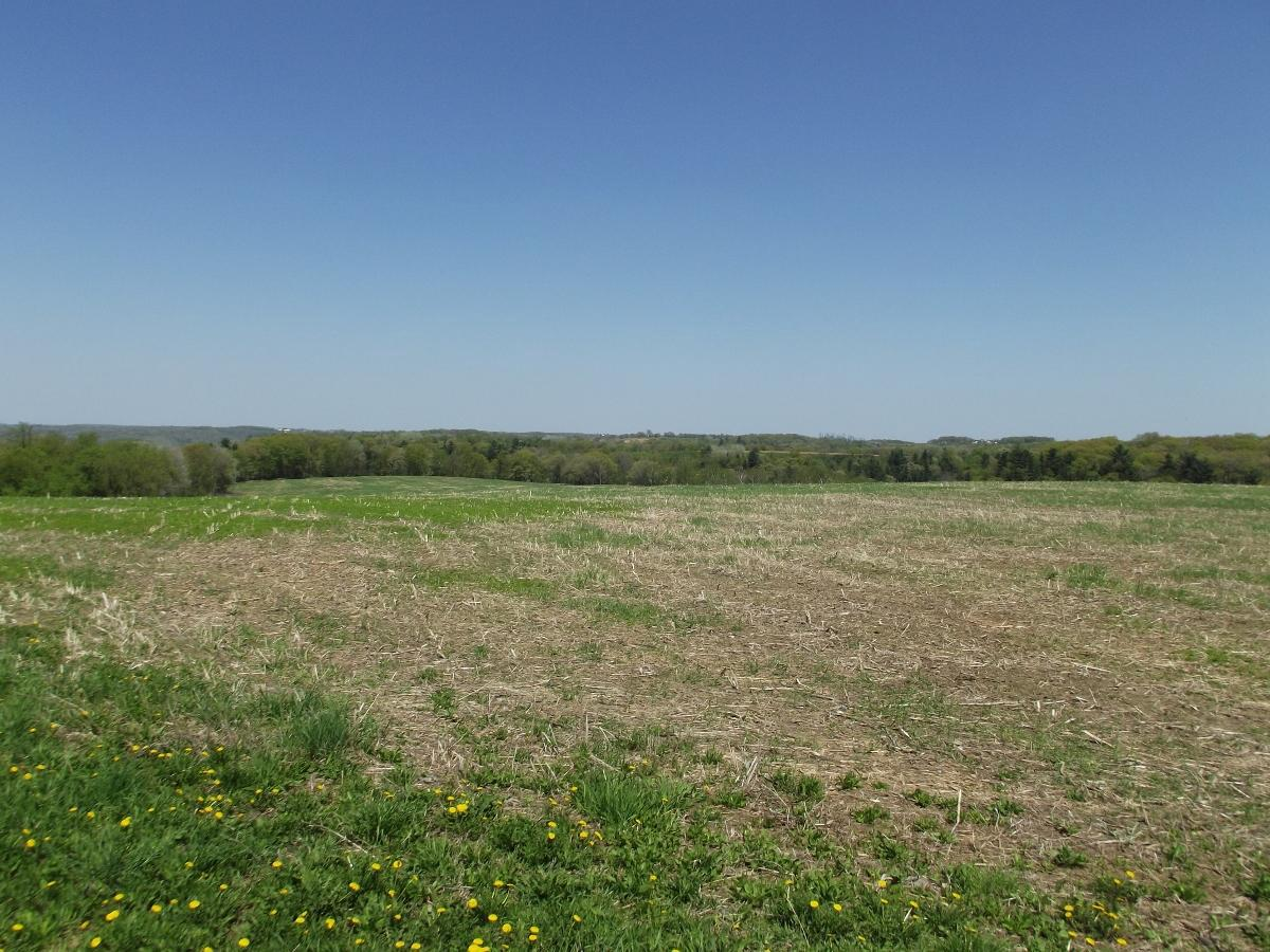 View Vacant Land For Sale at 30+/- AC Mimosa/Midway, Wilton, WI