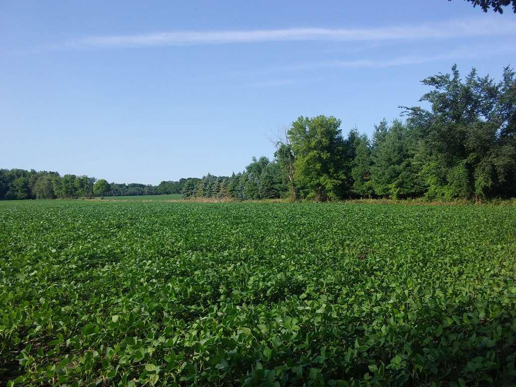 View Vacant Land For Sale at TOWNHALL ROAD, Eldorado, WI