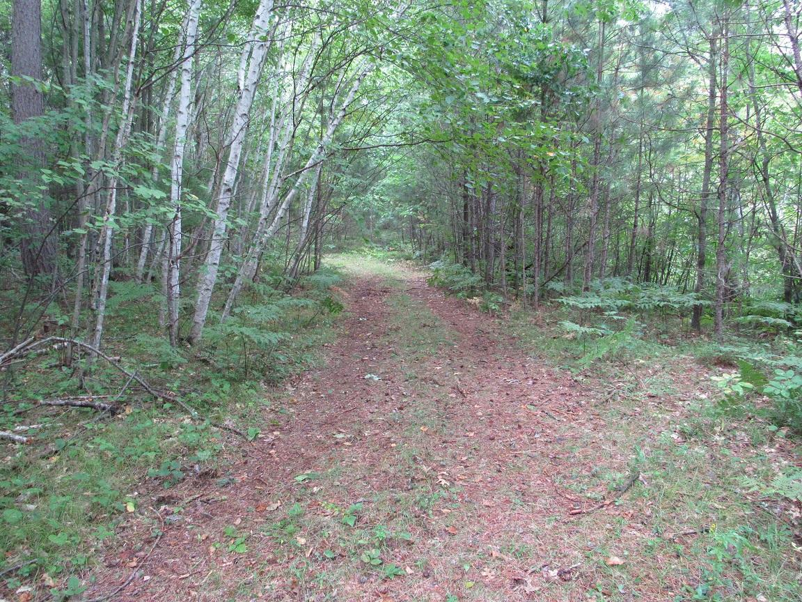 View Vacant Land For Sale at 200 Acres Bennet Rd, Athelstane, WI