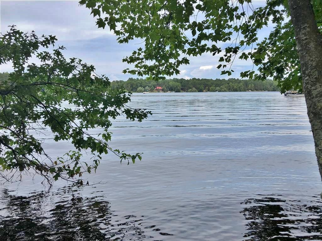 View Vacant Land For Sale at 0 River Rd, BARNES, WI