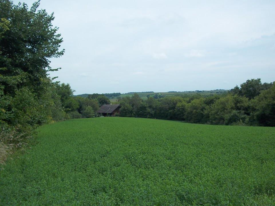 View Vacant Land For Sale at 17.38 Ac Allen Rd, Browntown, WI