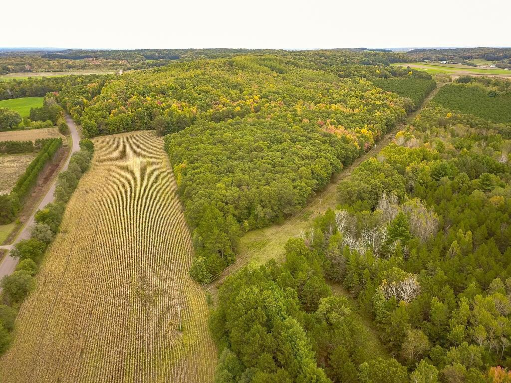 View Vacant Land For Sale at 15xx 150th Avenue, Cadott, WI