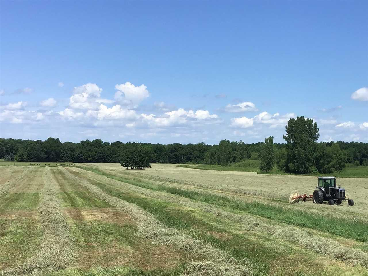 View Vacant Land For Sale at OAK HILL ROAD, Omro, WI