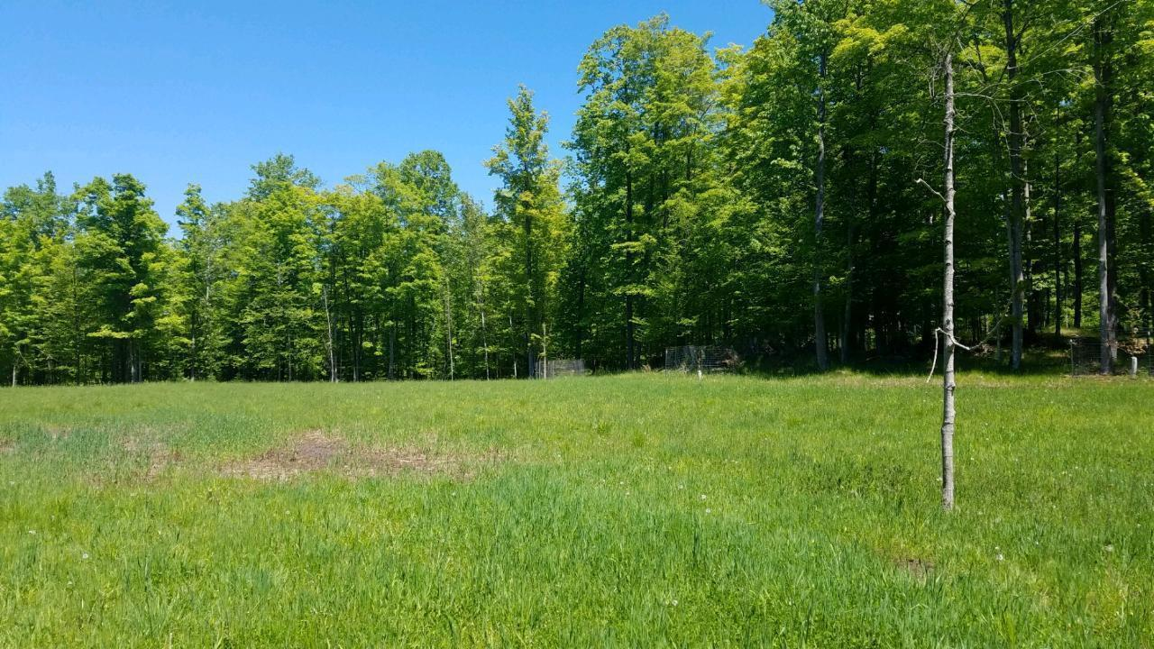 View Vacant Land For Sale at 322 Acres W Townline Rd, Porterfield, WI