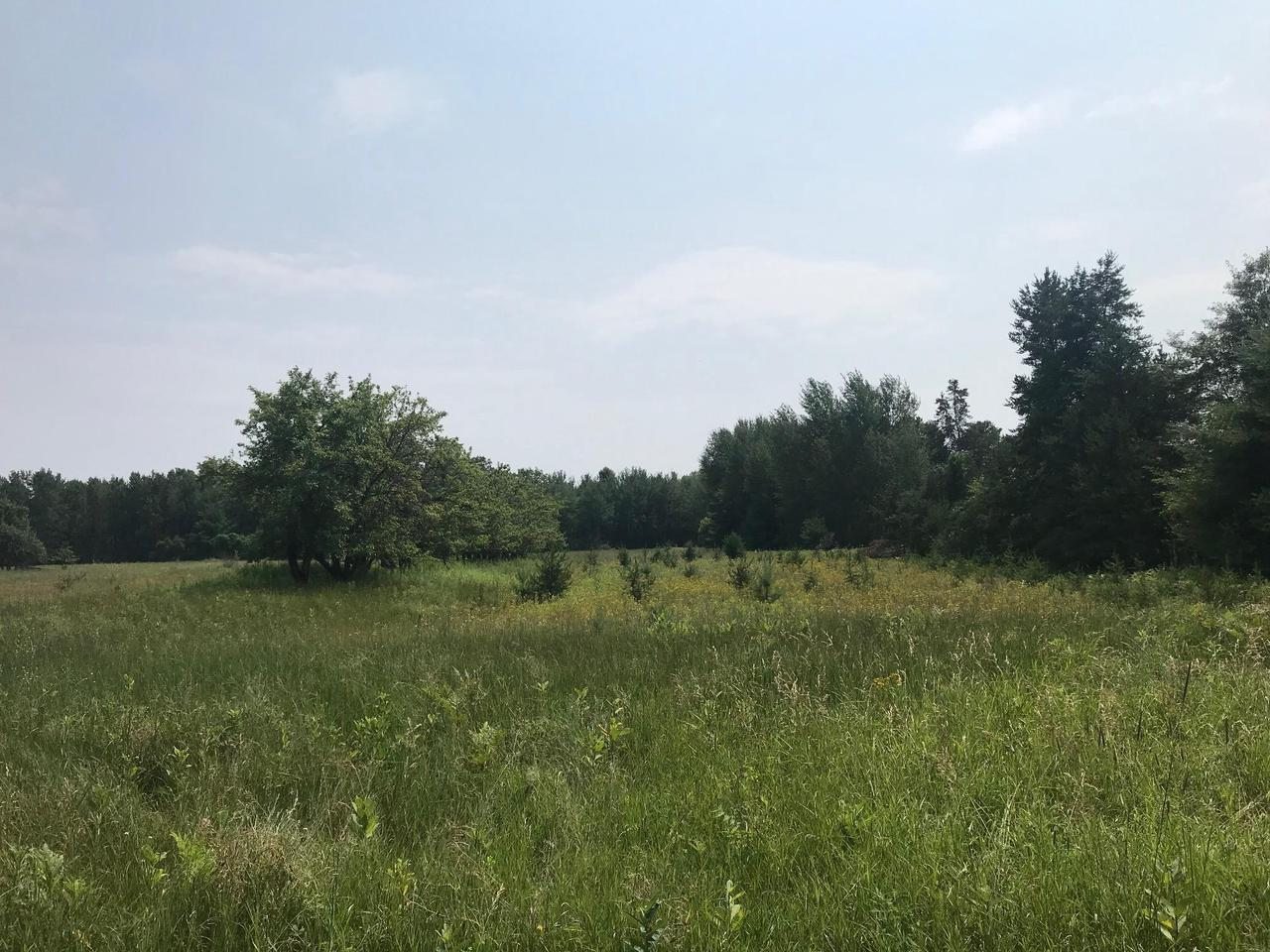 View Vacant Land For Sale at Lt 0 Leaf Rd, Marinette, WI