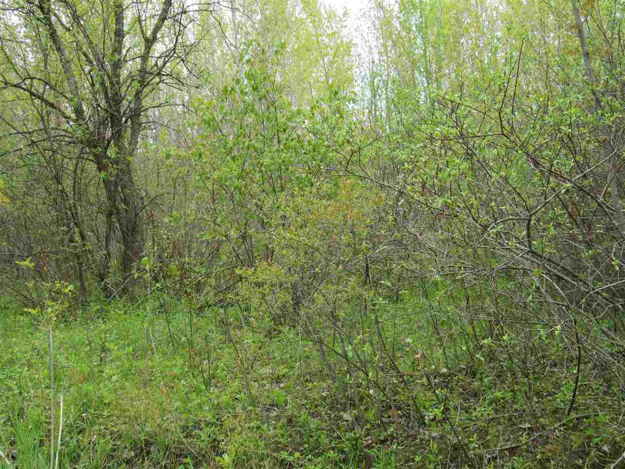 Secluded 1 Acre lot. Close to shopping and freeway. Could be included in a larger development. Commercial possibilities