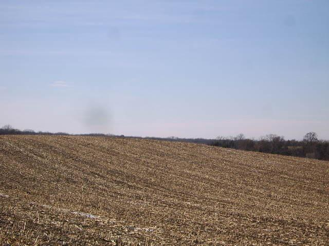 Country living on 5 acres in the beautiful Town of Berry.  Great views in all directions, lower level exposure available.  Only 20 minutes from Madison/Middleton, adjacent to the public Town Rd for easy access. Close to Black Earth & Cross Plains for quick items needed. Dane County's Festge Park is within walking distance.  Great area for bike riding.  Zoned for 1 animal unit per acre including horses.  3-five acre parcels to choose from.  Each listed separately.  See MLS #'s 1847062 & 1847068.  Farmer renting the land next to the lots would rent any unused acreage if buyer so desired.