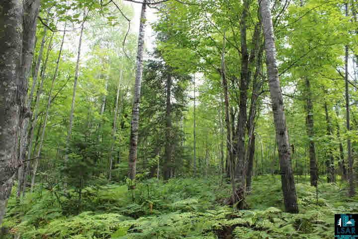 Douglas County, Wisconsin Land For Sale