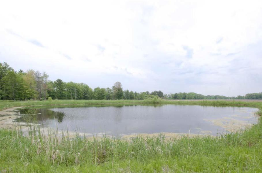 45 Acres of Agricultural land in Peshtigo!Hunt, Fish, Build or Till! Man-made pond is 18 ft deep and has fish.Road frontage w/power, no natural gas.Land is partially cleared and partially wooded.Apprx a couple of miles to bay, boat landing and park.Close to Peshtigo and Oconto with good deer hunting and near farming!Sale to include Parcel #'s 024-00037.000, 024-00037.001 and Part of Parcel # 024-00034.000Taxes To be Determined after split.*Deed restriction: No living quarters or home to be constructed South of the pond.
