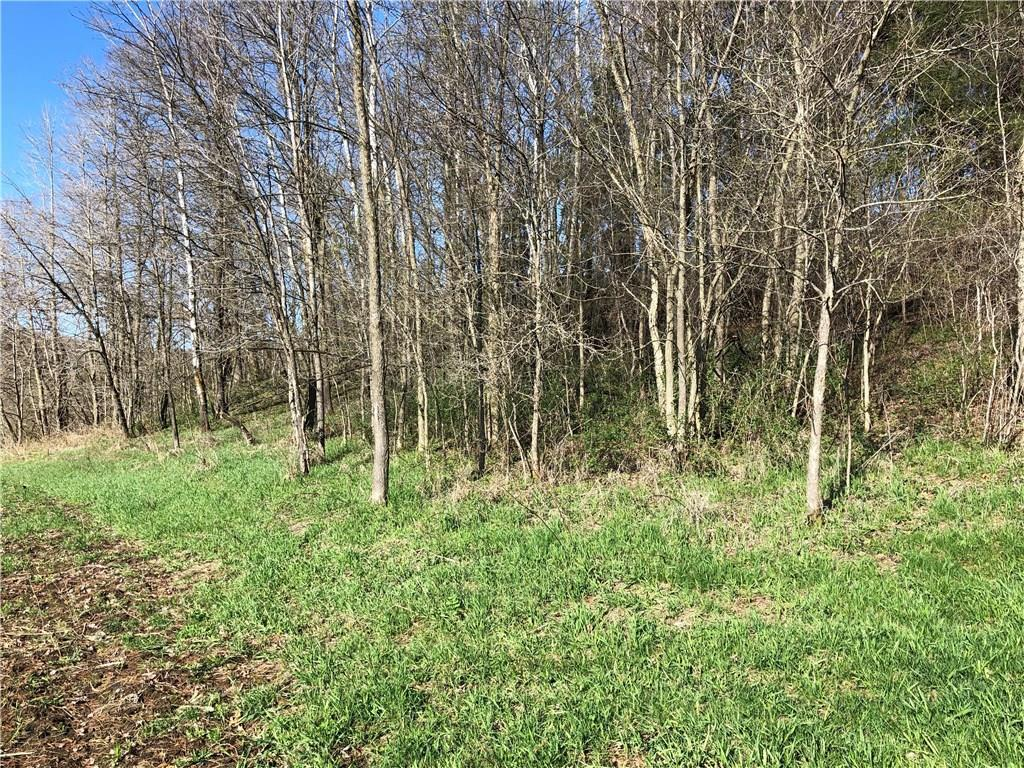 Hunting Land for Sale in Waumandee WI • Realty Solutions Group