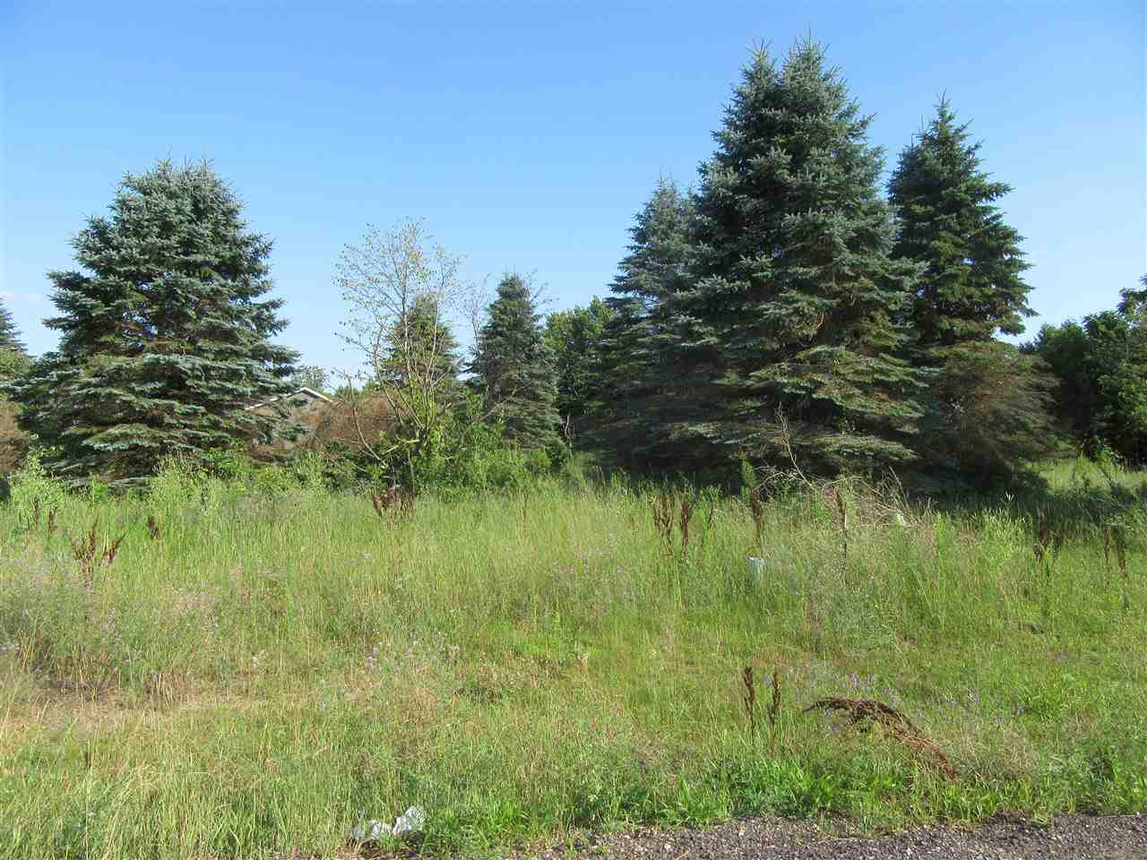 If you've been wanting to build a new home in a great Subdivision this is it! Lots 32 and 33 are available in the almost full Village Wood Pointe in Plover. Semi wooded lots are on a quiet cul-du-sac. All utilities are at the lot line. Take this opportunity to build your dream home with any builder you choose. Call today for a map and covenants.
