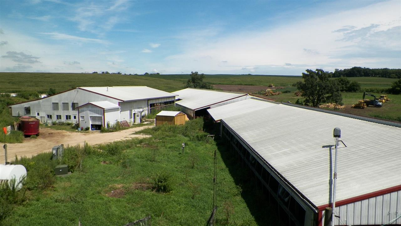 This Dairy Farm has 2 freestall barns with a total of 228 stalls. Double ten milking parlor with rapid exit.  Dry cow area with 40 head locks and drive by feeding. 200 feet of guard rail with cement lot feed area for heifers. The farm also has several newer heifer buildings with cement yards, front feeding, water and electric service. Dairy farm includes: cow id system, computer, fuel storage, bins, 3 LP gas tanks , camera security system, fans, gates,  feeders, milk house supplies, washer (barn), dryer (barn), portable buildings, 1 bedroom house new siding and roof 2018. New garage 2017 with insulated heated finished rooms in back.