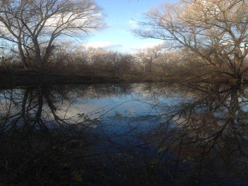 This is a 50 acre parcel with ponds and great hunting land. The trailer makes for a perfect hunting cabin.  Includes it's own well, septic system and shed.  Very private and beautiful in all seasons.  New range and 3 year old refrigerator. Water softener also included.  There is a total of 80 acres for sale and can be negotiated. Property used to be called Glacier Springs Trout Farm.