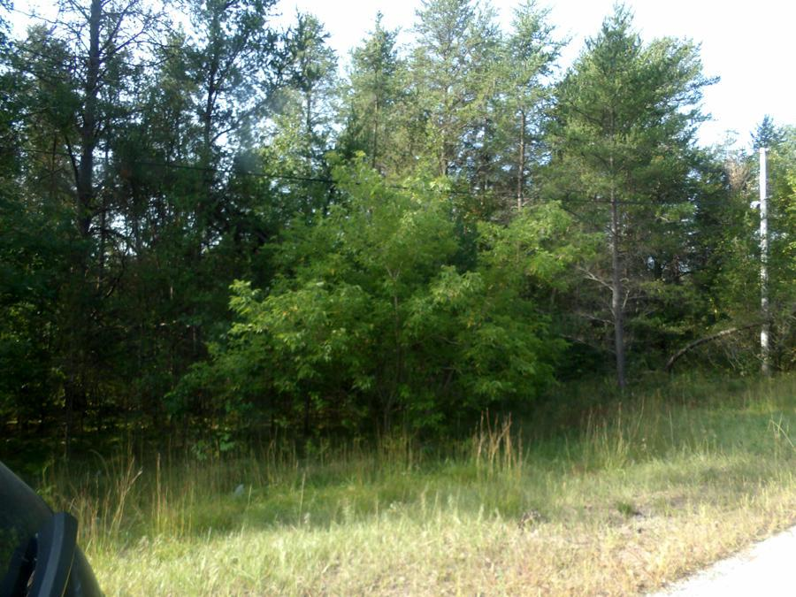 Affordable, Mature Wooded Lot on the outskirts of the Village. Electric/Phone Road Side.  City Water/Sewer, Natural Gas Available. Low Traffic Area.Lot is 100' x 200'. Zoned Residential. Build your New Home in Crivitz today.